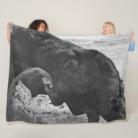 Curl and Wave Fleece Blanket
