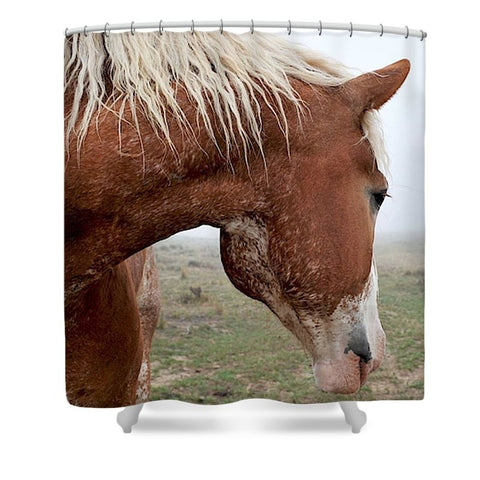 Dreaming in the Mist Shower Curtain