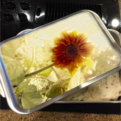 Dusty Retro Sunflower Cake Pan with Lid