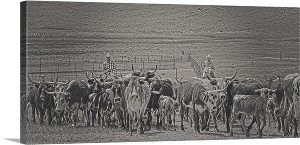 Heading Back to Open Range Canvas Print