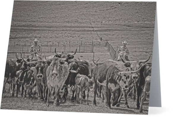 Heading Back to Open Range Note Cards and Greeting Cards (25 Pack)