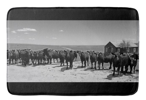 Home on the Range Bath Mat