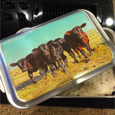 In the Mood for Hay Cake Pan with Lid