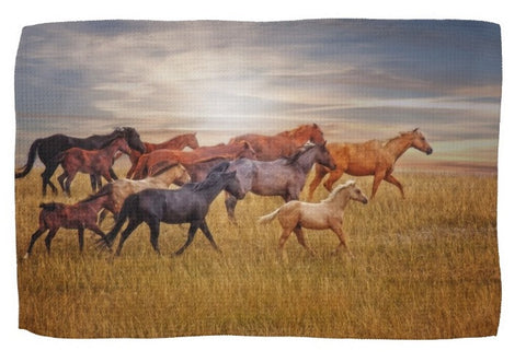 Last Light's Run Kitchen Towel