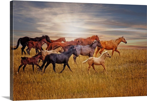 Last Light's Run Canvas Print