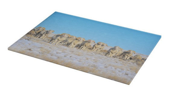 Line Em Up Rams Cutting Board
