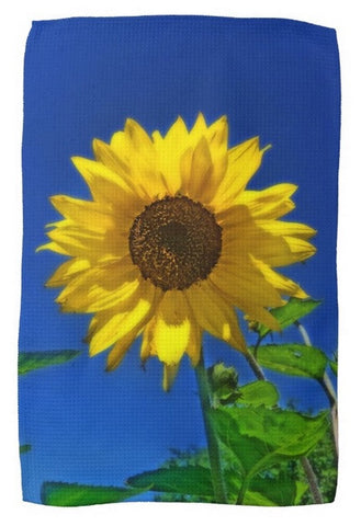 Maize 'N Blue Kitchen Towel