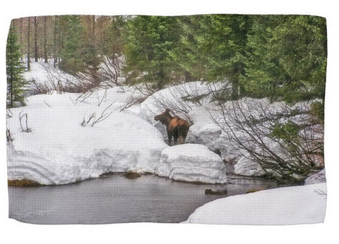 Moose in Alaska Kitchen Towel