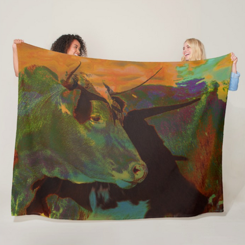 Multi-Color Power Fleece Blanket