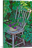 Old Chair New Petunias Canvas Print