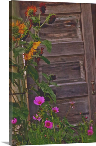 Old Kitchen Door And a Cottage Garden Canvas Print