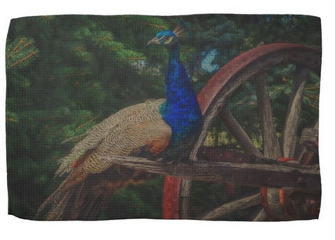 Peacock Vantage Kitchen Towel