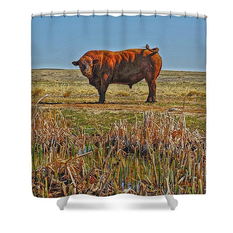 Pigtail Bull Shower Curtain