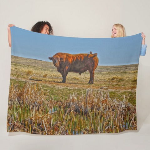 Pigtail Bull Fleece Blanket