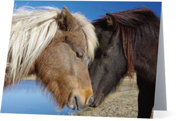 Pony Love Note Cards and Greeting Cards (25 Pack)