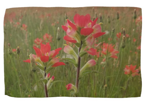 Prairie Fire Kitchen Towel
