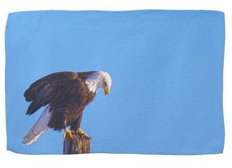 Preparing For Patriotic Flight Kitchen Towel