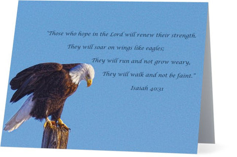 Preparing for Patriotic Flight Eagle Inspirational Note Cards and Greeting Cards (25 Pack)