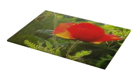 Red Poppy at Sunset Cutting Board
