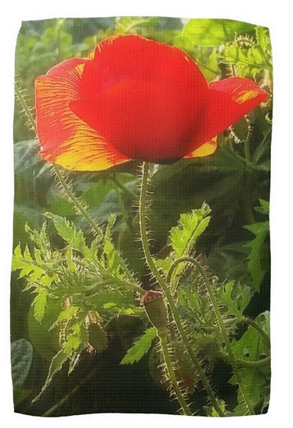 Red Poppy at Sunset Kitchen Towel