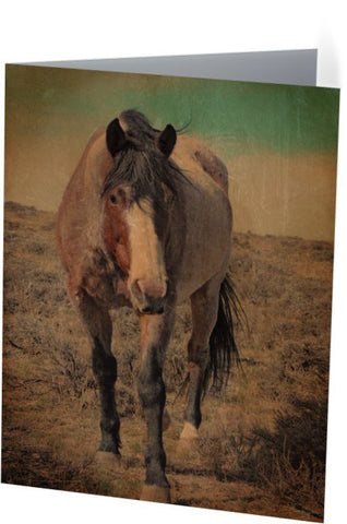 Red Roan and Sage Brush Note Cards and Greeting Cards (25 Pack)