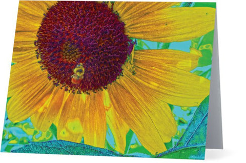 The Sunflower and The Bee Note Cards and Greeting Cards (25 Pack)