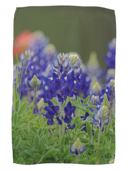 Roadside Beauties Kitchen Towel