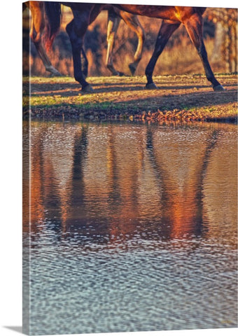 Running Reflection Canvas Print