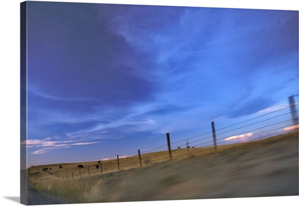 Running the Fenceline Canvas Print