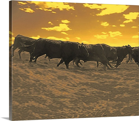 Running with the Boys Canvas Print