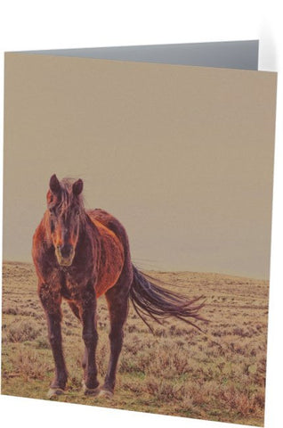 Rust And Prairie Wise Note Cards and Greeting Cards (25 Pack)