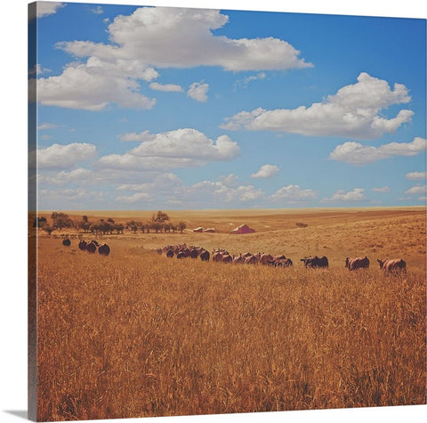 Sarah's View Canvas Print