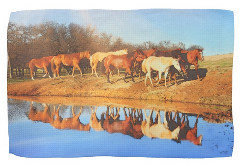 Walk Along The Pond Kitchen Towel