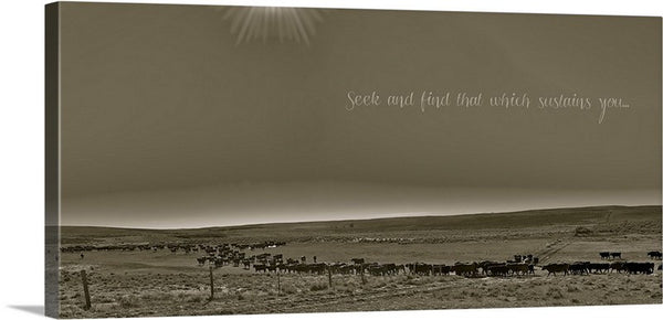 Seek and Find Canvas Print