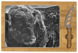 Snow Covered Ice Bull Cheese Board