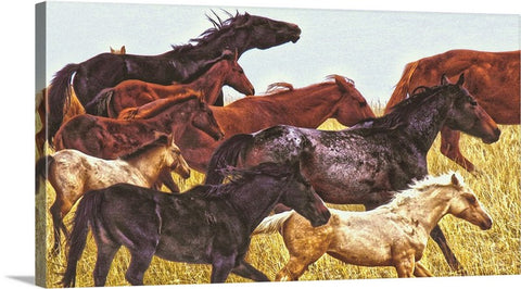 Spirit Races on the Prairie Canvas Print