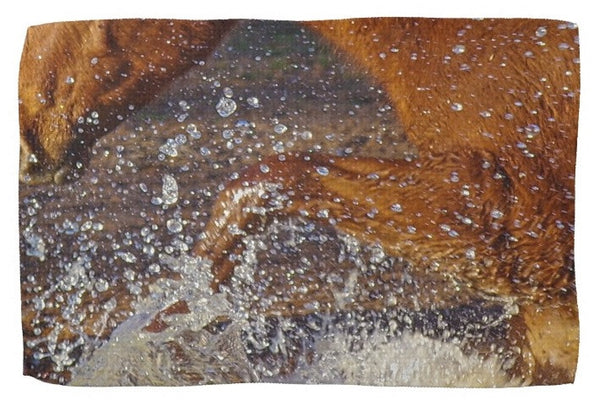 Splash Kitchen Towel