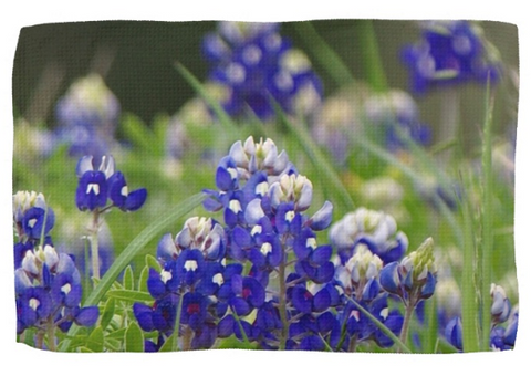 Springtime in Blue Kitchen Towel