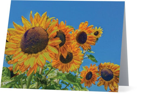Sun and Flower Conversation Note Cards and Greeting Cards (25 Pack)