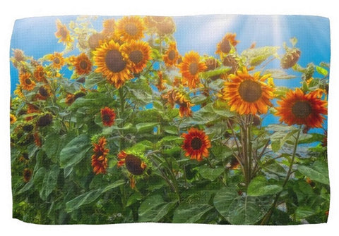 Sunflower Pack Kitchen Towel