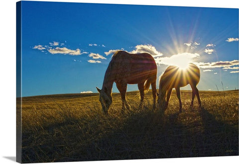 Sunrise Splendor Canvas Print