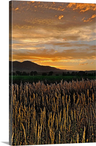Western Skies at Sunset Canvas Print