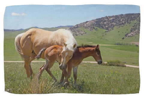 Sweet Comfort Kitchen Towel