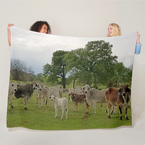 Texas Prairie Brahmans Fleece Blanket