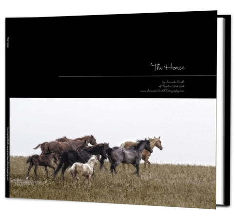 Horses Coffee Table Book - available in hard and soft cover