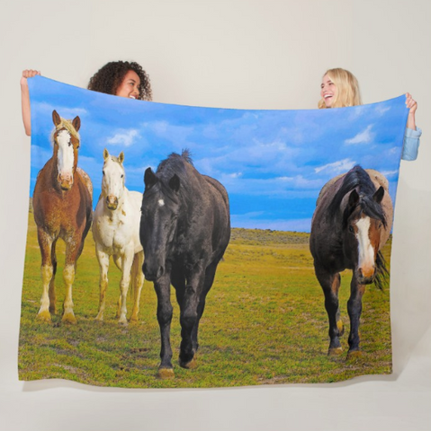 The Four Musketeers Fleece Blanket