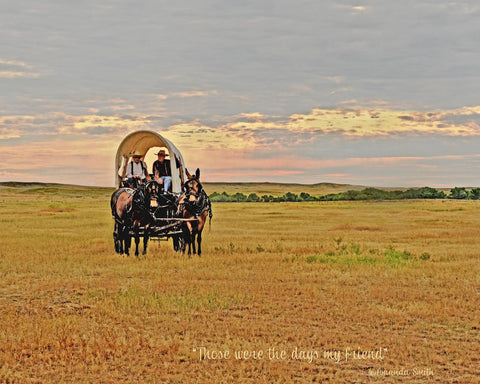 Oregon Trail Mule Drives, International - Marketing