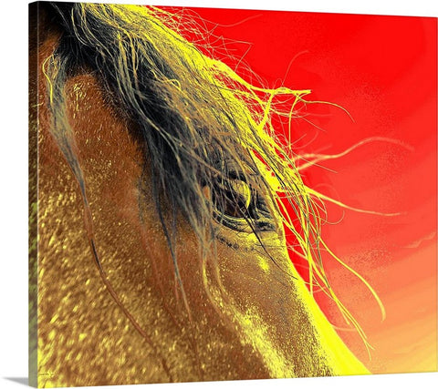Whips Eye Electrified Canvas Print