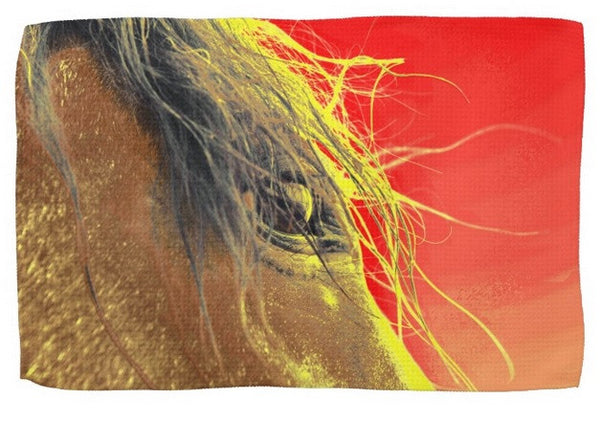Whips Eye Electrified Kitchen Towel