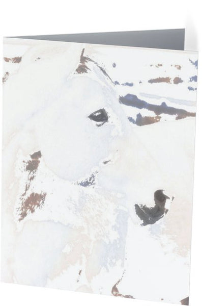 White Desert Ghost Note Cards and Greeting Cards (12 Pack)